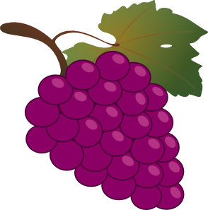 1194986125512843964grape_01_svg_med