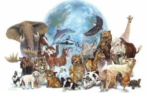 انقراض زمین