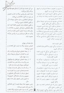 Scan 33